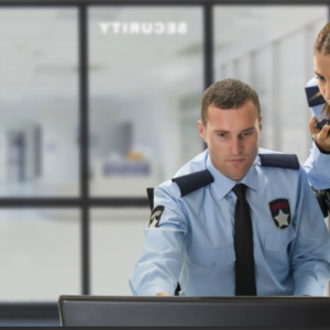 The Role of Private Security Services