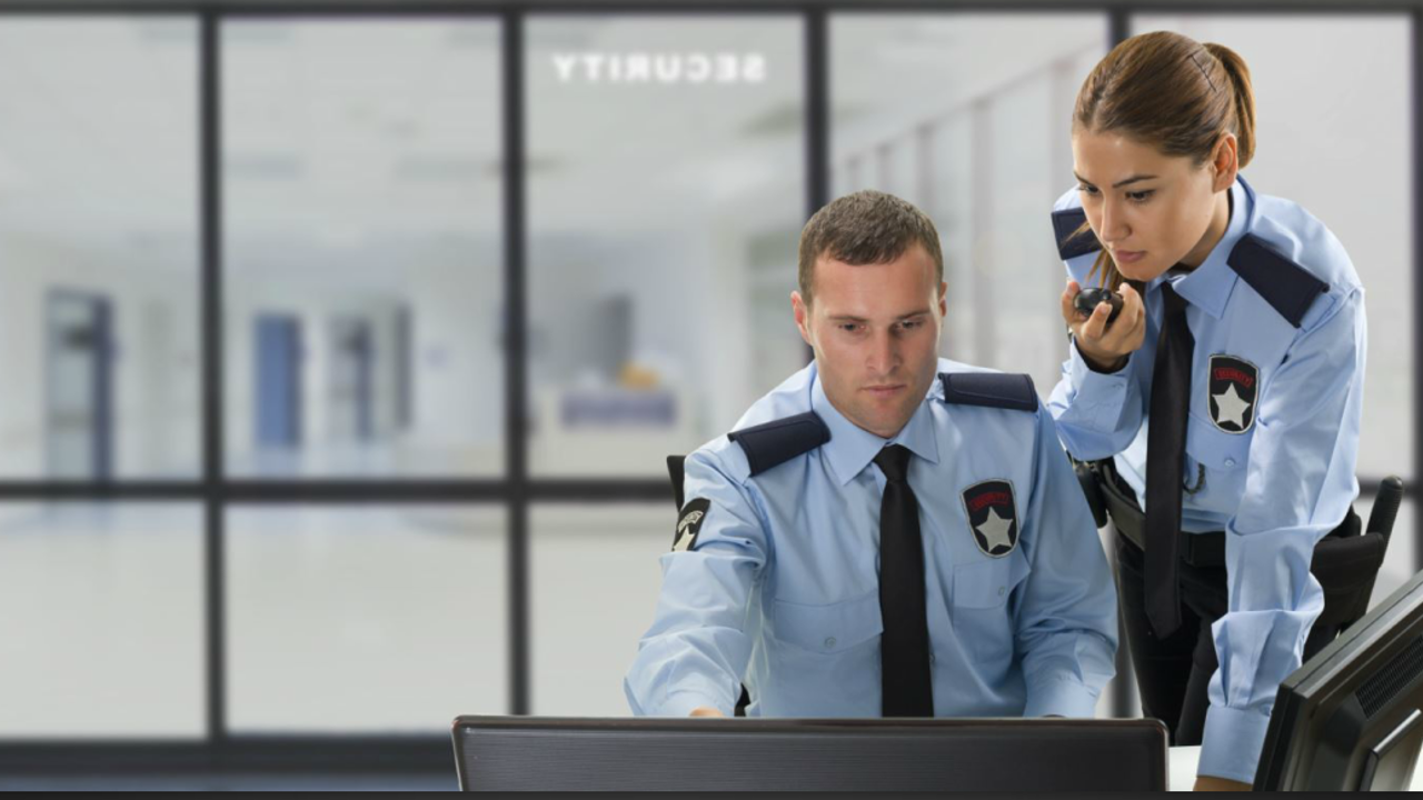 The Role of Private Security Services (US)